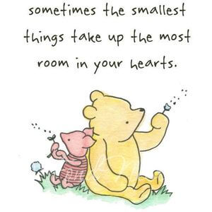 Sometimes the smallest things take up the most room in your hearts. #Cute #Quotes