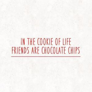 In the cookie of life, friends are chocolate chips. #Friendship #Quotes