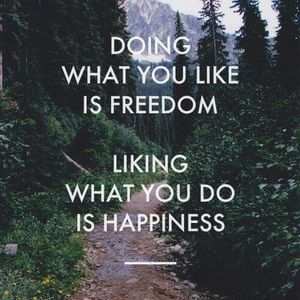 Doing what you like is freedom. Liking what you do is happiness. #Fun #Quotes