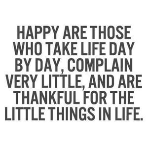 Happy are those who take life day by day, complain very little, and are thankful for the little things in life. #Happy #Quotes