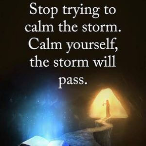 Stop trying to calm the storm. Calm yourself, the storm will pass. #Life #Quotes
